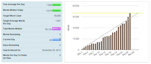 My NaNoWriMo 2014 Stats - Image courtesy of National Novel Writing Month